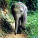 manansethi27's photo