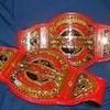 TNA KOS Tag Belts Annoyingchic photo