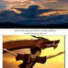 Dragon Dance paintbrush12 photo