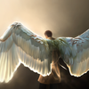 angel wings tho flabaloobalah photo