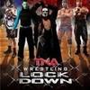 TNA Lockdown 2013 (Alternate) RoyalSatanas photo