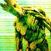 Groot HappyJenny photo