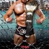 TNA Lockdown 2014 RoyalSatanas photo