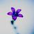 nmdis's user photo