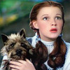 Dorothy and the lovely Toto yorkshire_rose photo