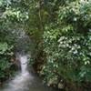 Waterfall and a creek. Mjones8705 photo