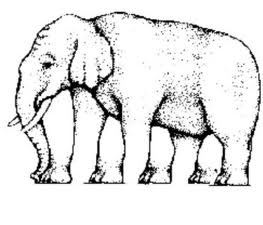 How many legs does the elephant have?