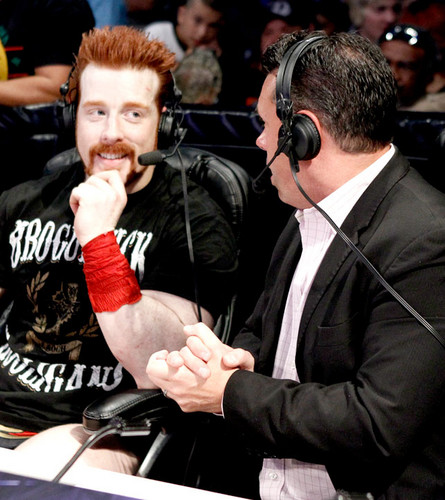 handsome sheamus