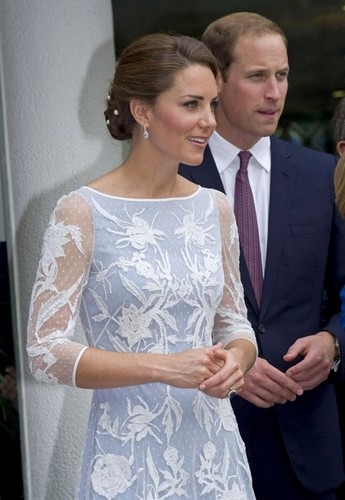 Will and Kate attend a reception