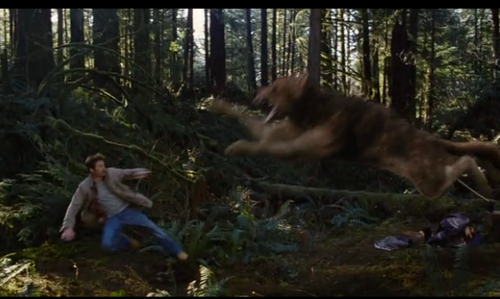Charlie and Jacob-Wolf//New still, Breaking Dawn Part 2