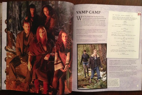 Complete scans of the twilight saga