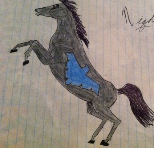 Nightwing Stallion