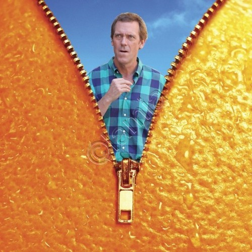 Hugh Laurie The Oranges