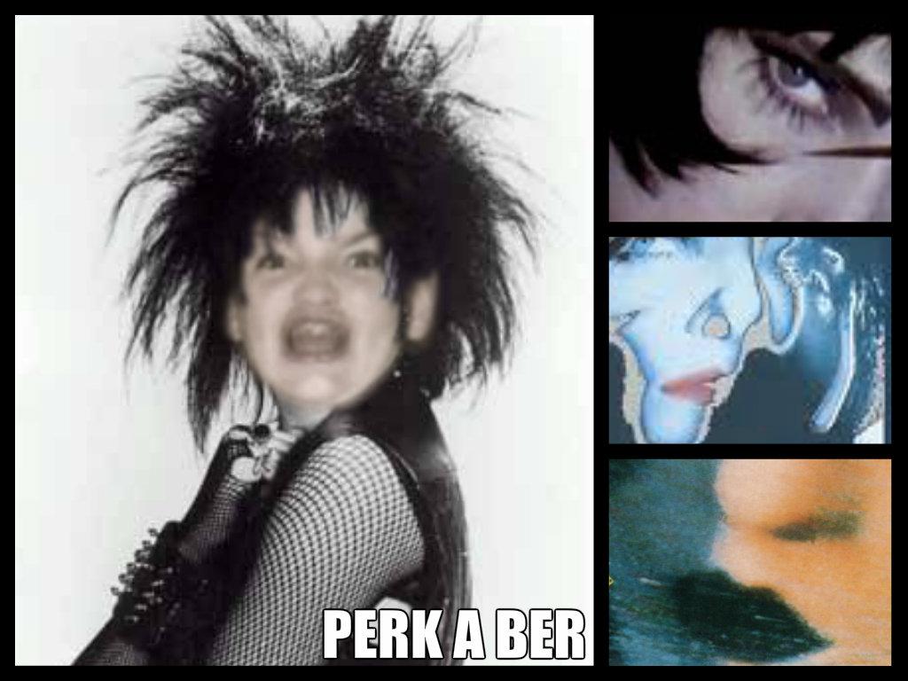 Ermahgerd Siouxsie Siouxsie And The Banshees Fa Art 33273340