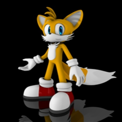 tails in 2013