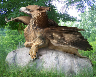 A real looking Griffin