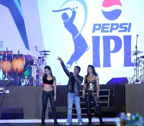 At IPL Opening Ceremony 2013