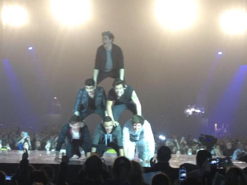 one direction/5 seconds of summer human pyramid 5