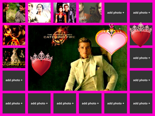 Hunger Games collage