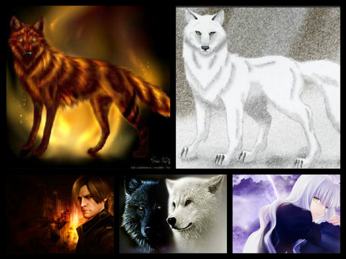 Ma Wolves~