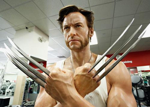 Madame Tussauds Unveils a Wax Wolverine in NYC