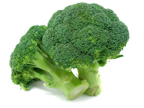 Healty Green broccoli, broccolo