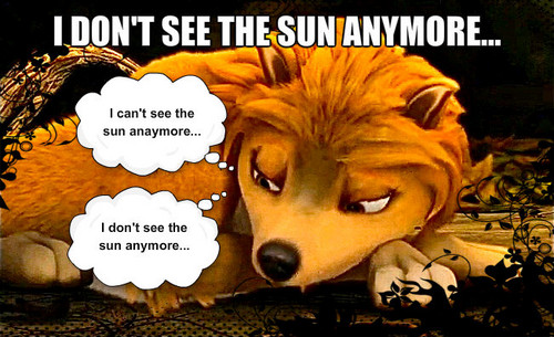 I can't see the sun anymore...
