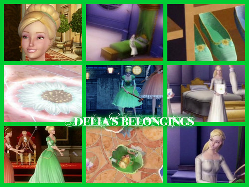 Delia's Belongings