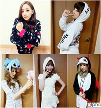 skarf member collage