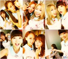 skarf members collage
