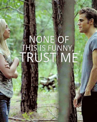 steroline + quotes