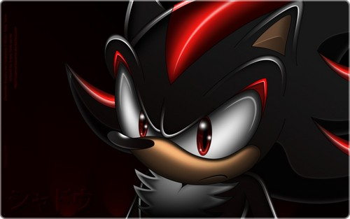 .:Dark Hedgehog:.