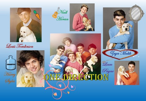 One Direction With LAB PUPPIES!!