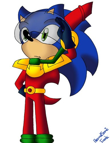 .:Officer Zonic:.