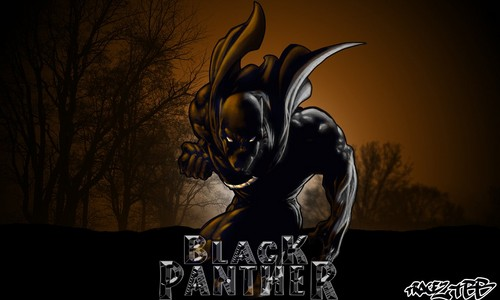 Black harimau kumbang, panther wallpaper