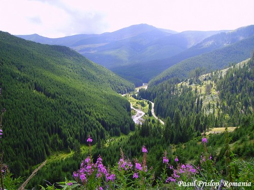 Pasul Prislop carpathian mountains Romania most beautiful european landscapes