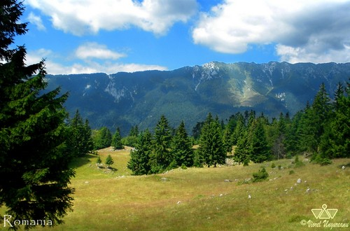 Carpathian mountains Romania
