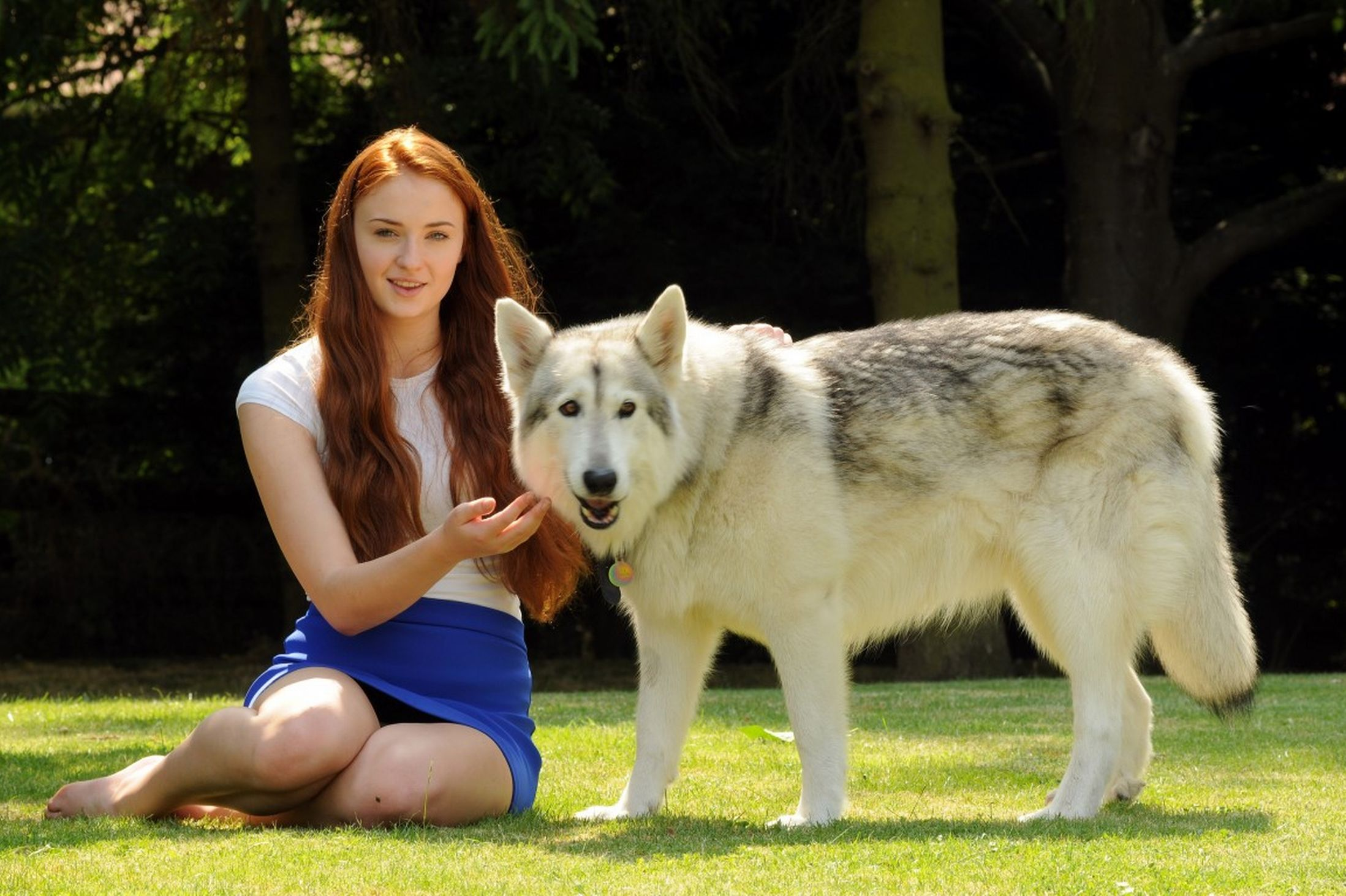 Sophie Turner con Lady