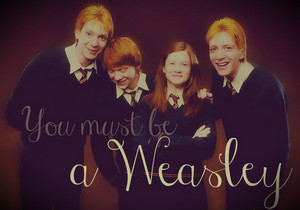 The incredible Weasley Family