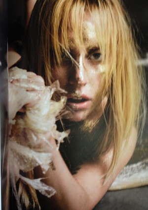 HQ Scans of Gaga's photos for V Maga