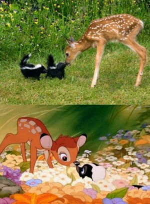 bambi and bunga