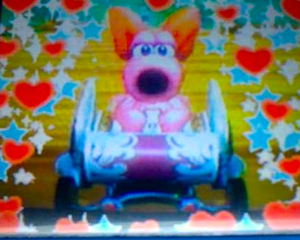 My DSi fotos of Birdo in Mario Kart Wii-edited using the editar function