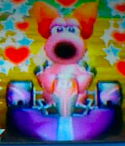 My DSi fotos of Birdo in Mario Kart Wii-edited using the fit function.