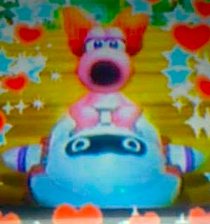 My DSi fotos of Birdo in Mario Kart Wii-Edited using the editar function.
