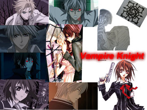 MyVampire Knight Collage on the do what anda want page.