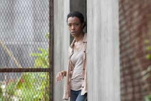 Walking Dead 4x03 - Isolation