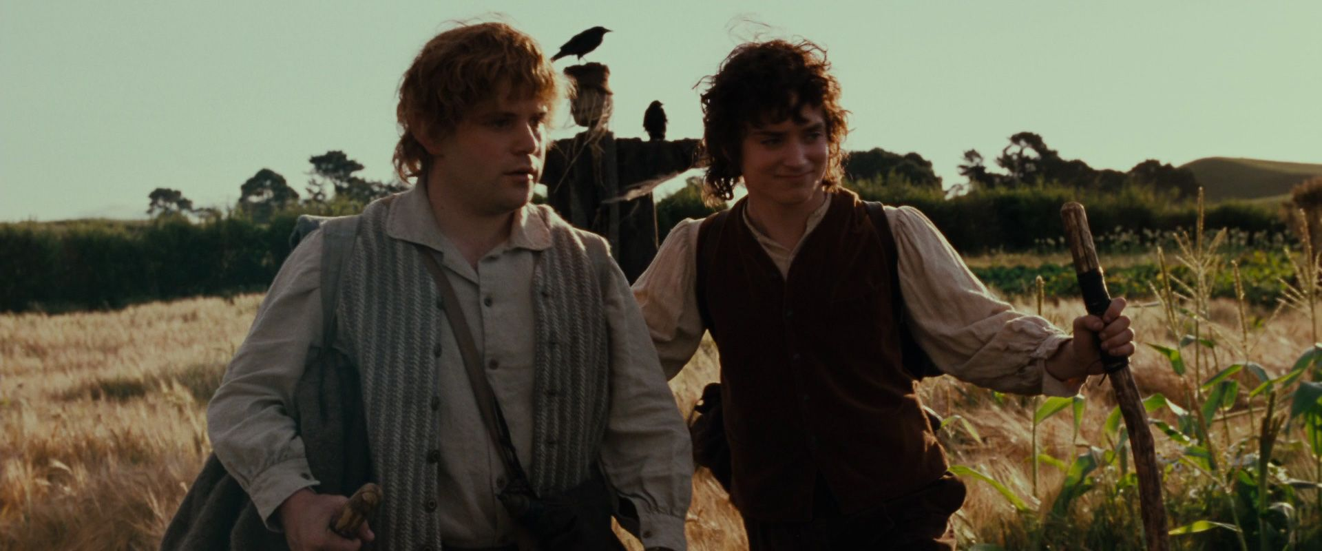 http://images6.fanpop.com/image/photos/36000000/Frodo-Sam-image-frodo-and-sam-36084238-1920-800.jpg