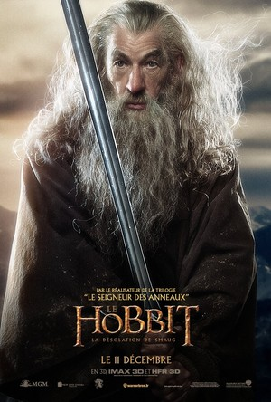 The Hobbit: The Desolation of Smaug French Poster - Gandalf