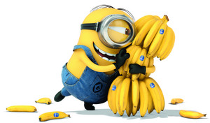 the minion and the banna