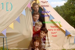 one direction in tent